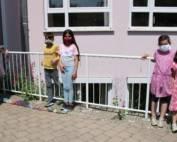 Steinschlange Grundschule